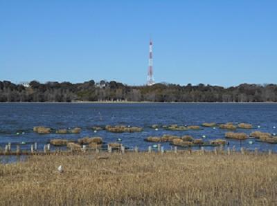 湖1.jpg